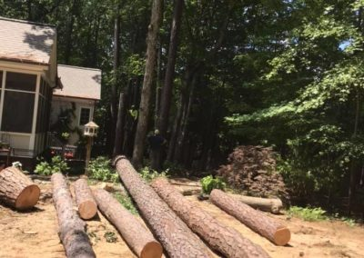 FB08132019-emergency-tree-services-holly-springs-2