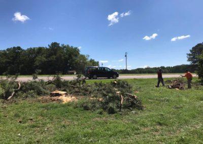 FB08132019-tree-cutting-service-fuquay-varina-6