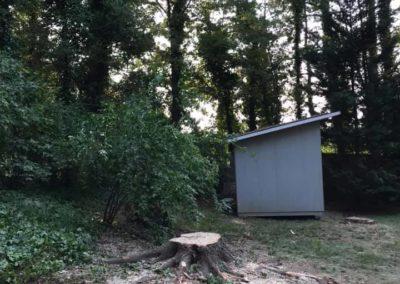 FB08132019-tree-cutting-service-raleigh-15