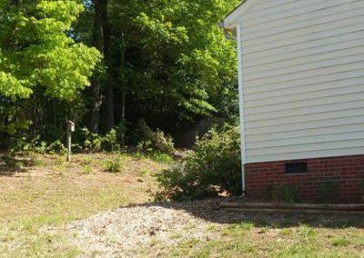 FB08132019-tree-removal-apex-7
