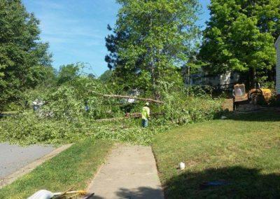 FB08132019-tree-removal-apex-8