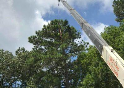 FB08132019-tree-removal-services-fuquay-varina-4