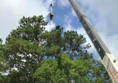 FB08132019-tree-removal-services-fuquay-varina-5