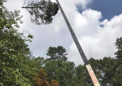 FB08132019-tree-removal-services-fuquay-varina-6